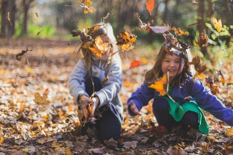 Children Playing with Dry Leaves