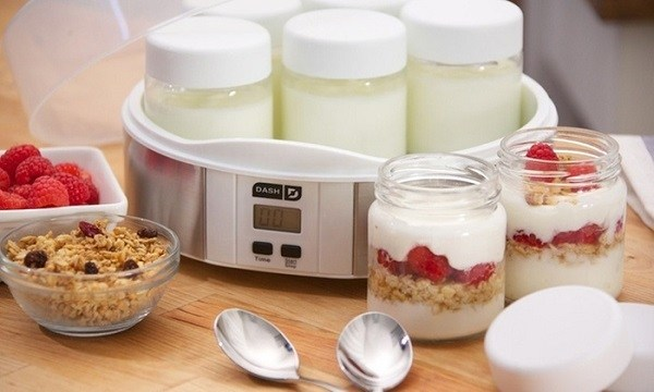 best yogurt maker: reviews and comparison
